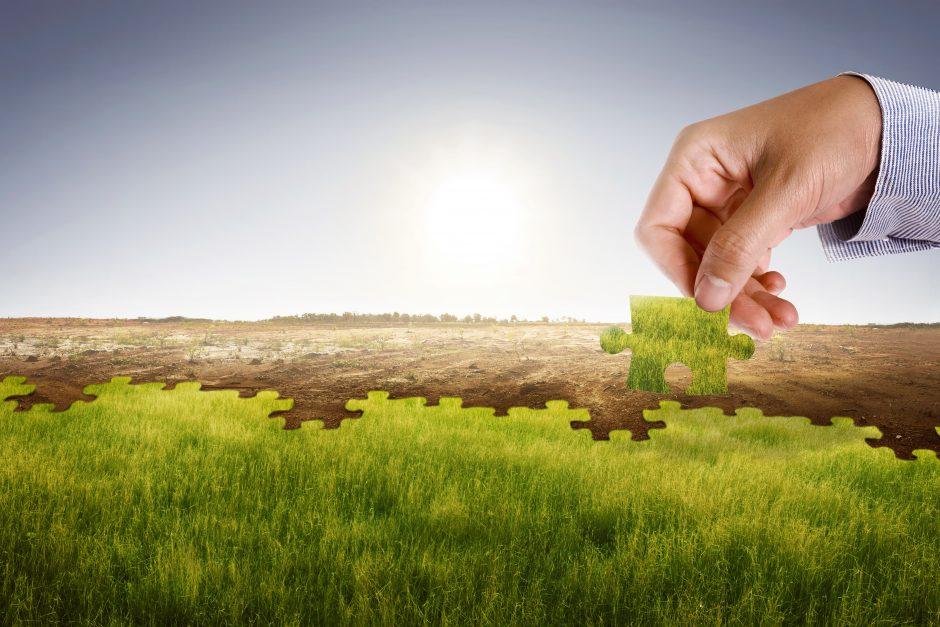Klimarisiken werden in Zukunft bei nachhaltigen Investitionen stärkere Berücksichtigung finden müssen.
